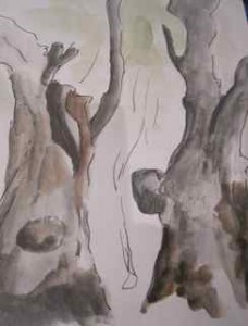 Zelkova trees painting by Sarah Anderson